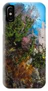 Sea Fan On Soft Coral In Raja Ampat IPhone Case