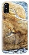 Sleeping Giant IPhone Case