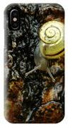 Snail, Pointe-des-cascades, Quebec IPhone Case