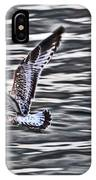 Soaring Gull IPhone Case