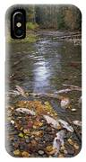 Sockeye Salmon Spawning IPhone Case