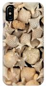 Star Sand Foraminiferans IPhone Case