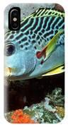 Sweetlips Fish IPhone Case