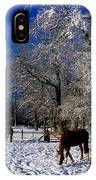 Thoroughbred Horses, Mares In Snow IPhone Case