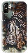 Tropical Fish Lionfish IPhone Case