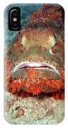 Tropical Fish Scorpionfish IPhone Case