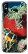 Twoband Anemonefish IPhone Case