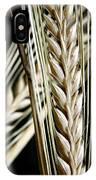 Wheat Ears (triticum Sp.) IPhone Case