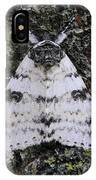 White Underwing Moth IPhone Case