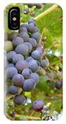 Wild Grapes IPhone Case