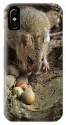 Wood Mouse Feeding IPhone Case