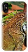 Iguana Lizard IPhone Case