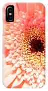 1673-001 IPhone Case