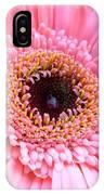 1808c IPhone Case