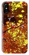 Beautiful Fall ... IPhone Case