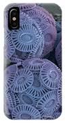 Calcareous Phytoplankton, Sem IPhone Case