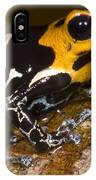 Crowned Poison Frog IPhone Case