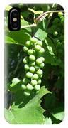 Green Grape Bunch IPhone Case