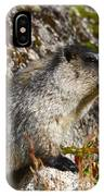 Hoary Marmot IPhone Case