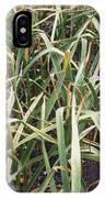 Organic Serpent Garlic IPhone Case