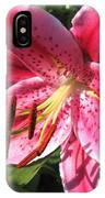 Oriental Lily Named Tiber IPhone Case