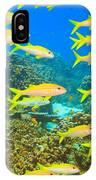 School Of Yellowfin Goatfish IPhone Case