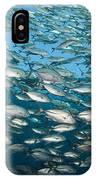 Schooling Bigeye Jacks IPhone Case