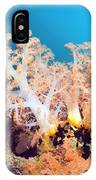 Soft Coral On A Reef IPhone Case