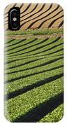 Spinach Crop IPhone Case