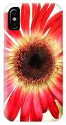 2192c-014 IPhone Case