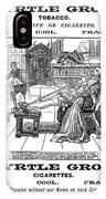 Sir Walter Raleigh IPhone Case