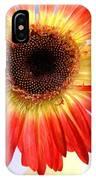 2221c1-002 IPhone Case