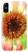 2269c-001 IPhone Case