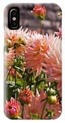 Dahlia Flowers IPhone Case