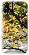 Fall Along Williams River IPhone Case
