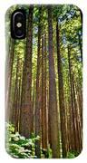 Multnomah Falls Oregon IPhone Case