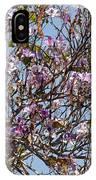 Saucer Magnolia Or Tulip Tree Magnolia X Soulangeana IPhone Case