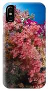 Soft Coral In Raja Ampat, Indonesia IPhone Case