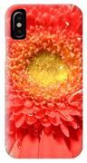 3258c IPhone Case