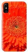 3289 IPhone Case