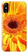 3410-005 IPhone Case