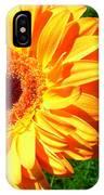 3411-001 IPhone Case