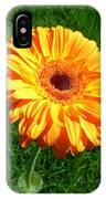3411 IPhone Case