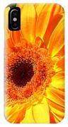 3412-001 IPhone Case
