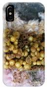 Bumblebee Nest IPhone Case