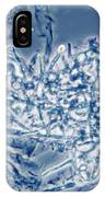 4 Phase Contrast- Candida Albicans IPhone Case
