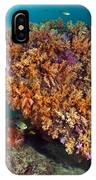 Tropical Reef, Indonesia IPhone Case