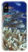 Underwater Landscape  IPhone Case