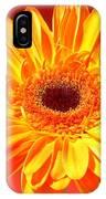 4183-001 IPhone Case