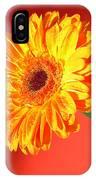 4186 IPhone Case